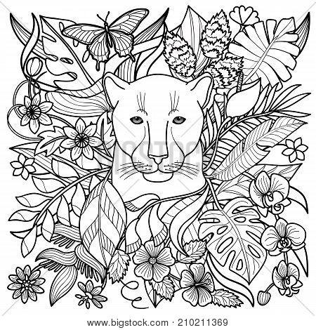 450x470 Jungle Pattern Panther, Flowers Vector Amp Photo Bigstock