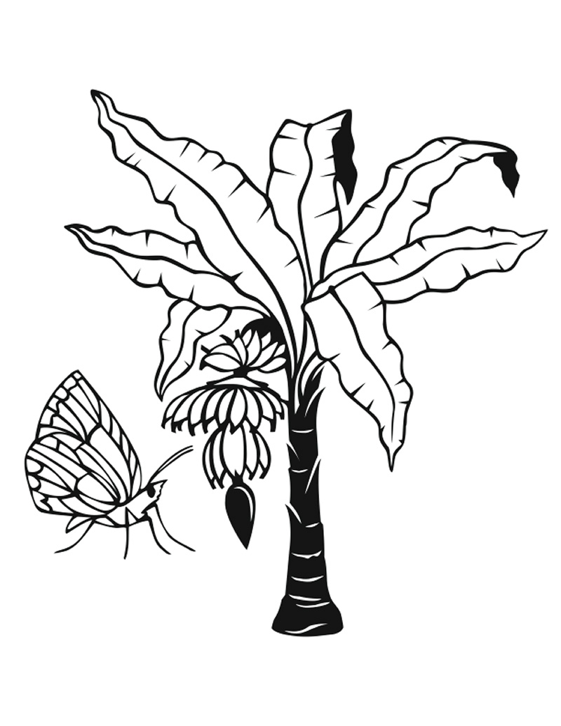 jungle leaf coloring pages - photo#26