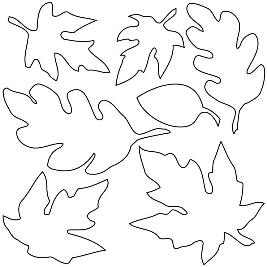 863x863 6 Images Of Leaf Outline Printable Template Leaves Outlines
