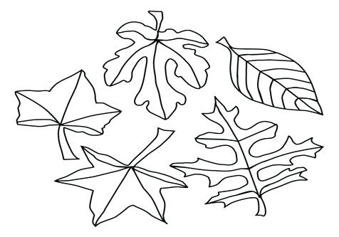 jungle leaf coloring pages - photo#10