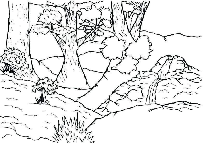 842x595 Jungle Coloring Sheets Scene Page Best Shots