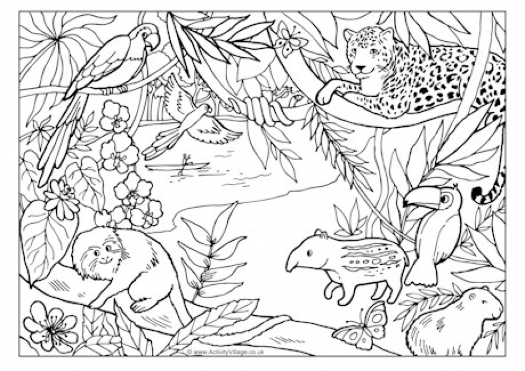 1024x723 Rainforest Colouring Page Pertaining To Jungle Scene Coloring