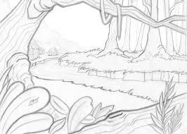 266x190 Image Result For Rainforest Plants Drawings Seb's Art Homework