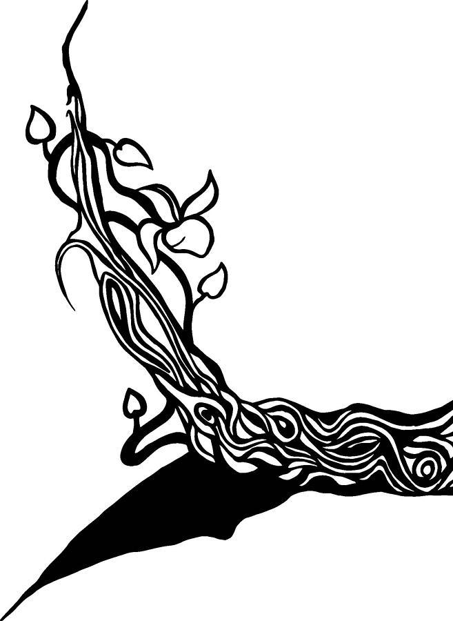 657x900 Tree Vines Drawing By Tu Ly