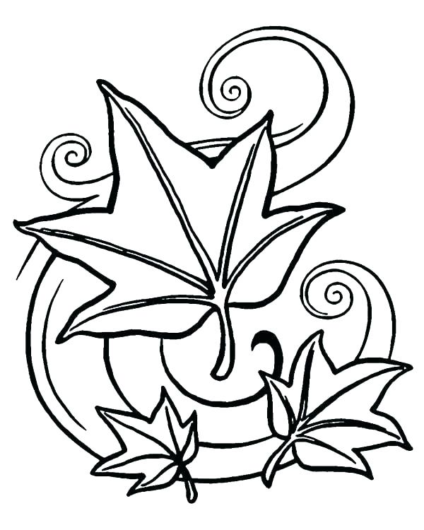 600x750 Coloring Pages Leaves
