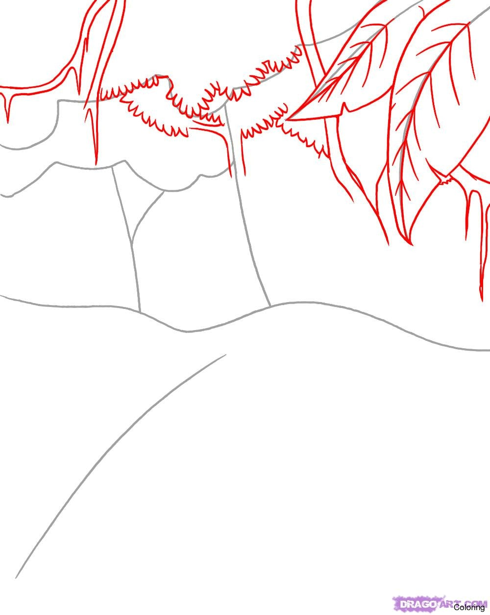 1000x1254 How To Draw A Lagoon Step 5 1 000000089537 Rainforest Coloring