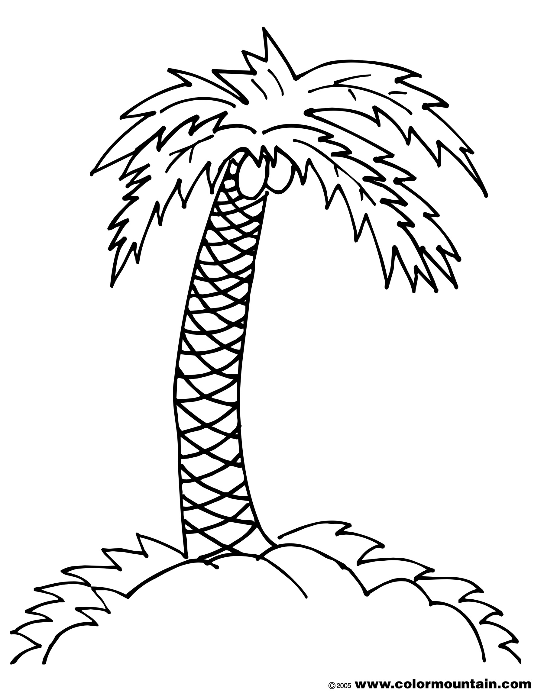 1800x2294 Palm Tree Coloring Page