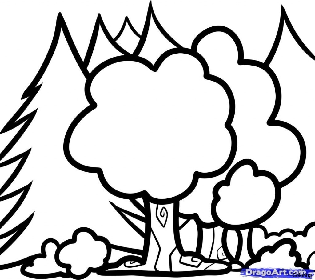 1024x910 Rainforest Coloring Pages To Print How Draw A 15f Tree Step By