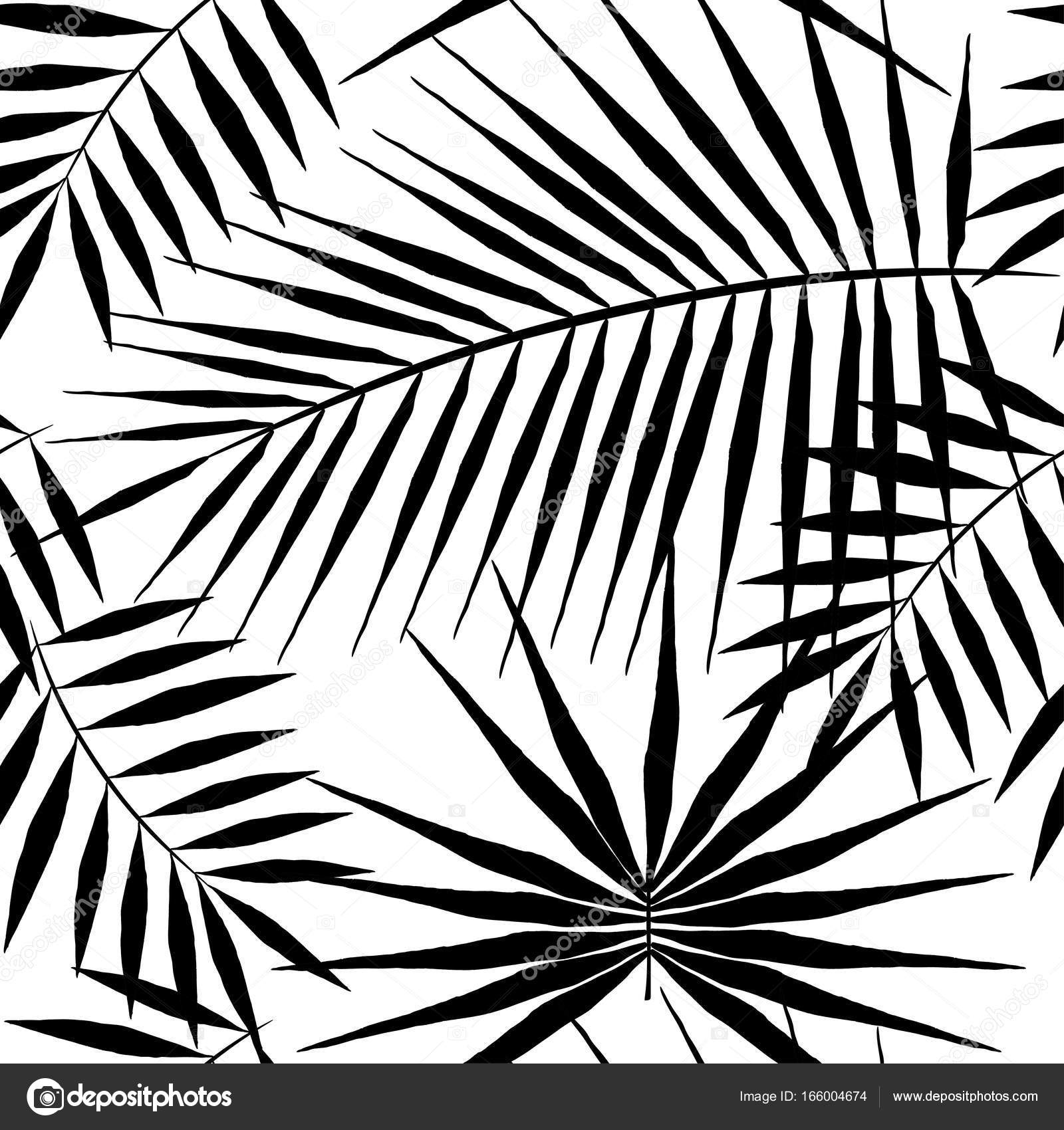 1600x1700 Seamless Pattern Of Exotic Palm Trees. Black Leaves On White