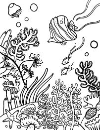 202x261 Jungle Coloring Pages Free Description Of Jungle Trees Coloring
