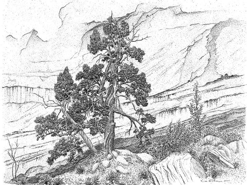 800x600 Utah Artwork Of Kimball S. Erdman
