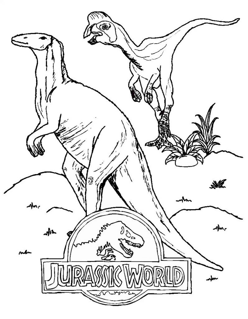 797x1024 Jurassic World Coloring Pages Online New Jurassic World Coloring