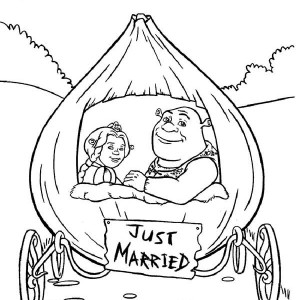 300x300 Shrek And Princess Fiona In Onion Carriage They Were Just Married