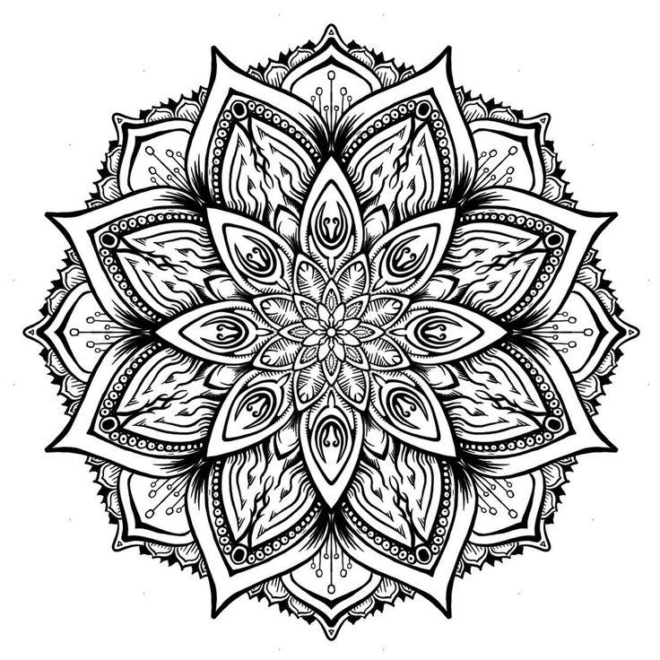736x736 81 Best Images On Mandala Art, Mandala Drawing