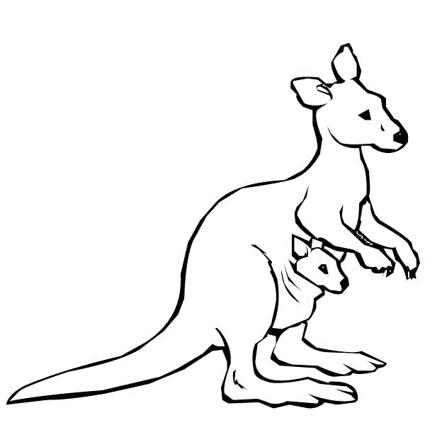 600x600 Baby Kangaroo Coloring Pages To Beatiful Draw Cute Drawing