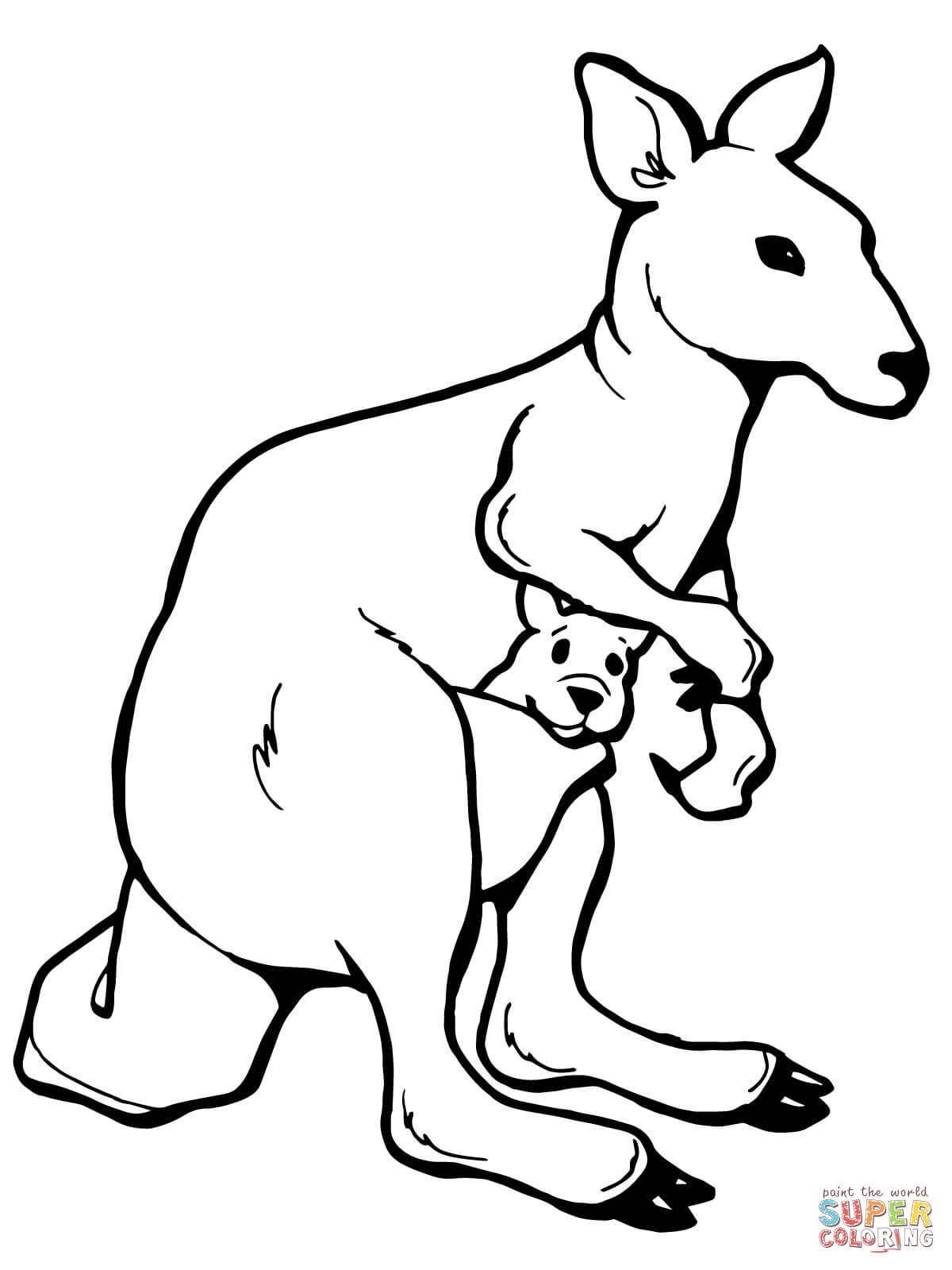 1200x1600 Kangaroo Coloring Page Preschool To Funny Draw Kids