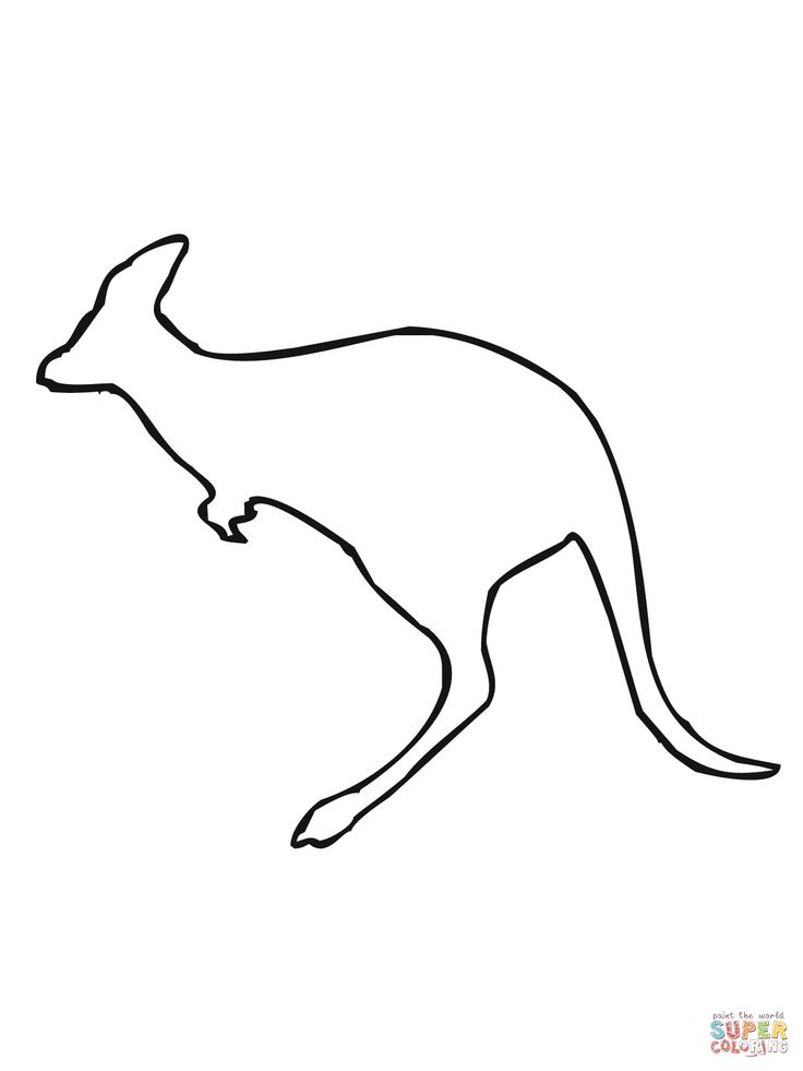 736x981 Innovative Koala Coloring Pages Indicates Affordable Article