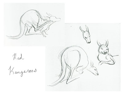 400x309 Animal Life Drawings Almontree