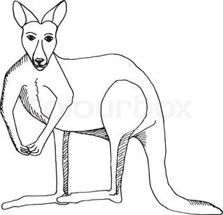 320x309 Australia Background With Kangaroo Stock Vector Colourbox