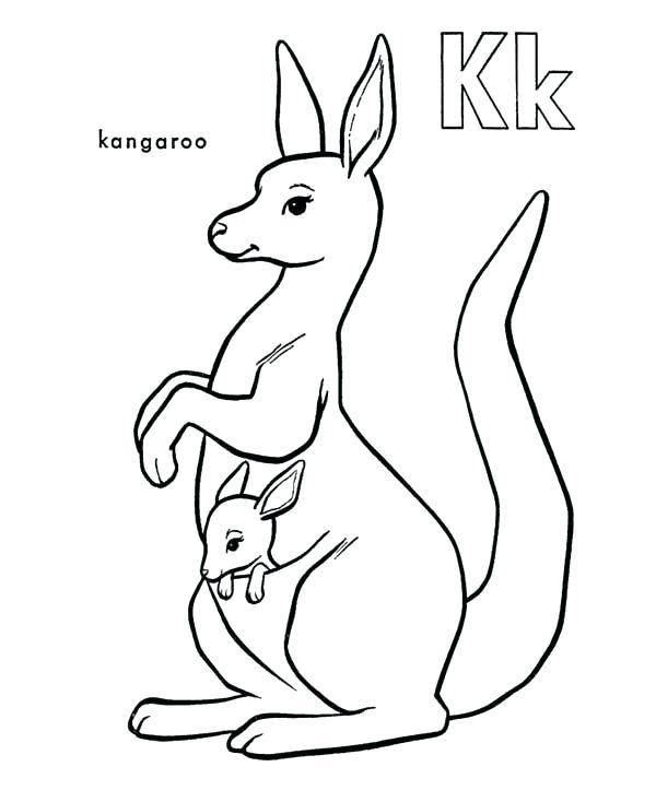 600x734 Coloring Pages Of Kangaroos Kangaroo Coloring Pages Red Kangaroo