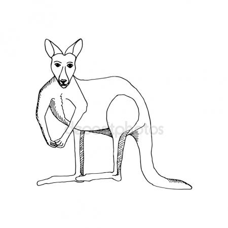 450x450 Kangaroo Tattoo Stock Vectors, Royalty Free Kangaroo Tattoo