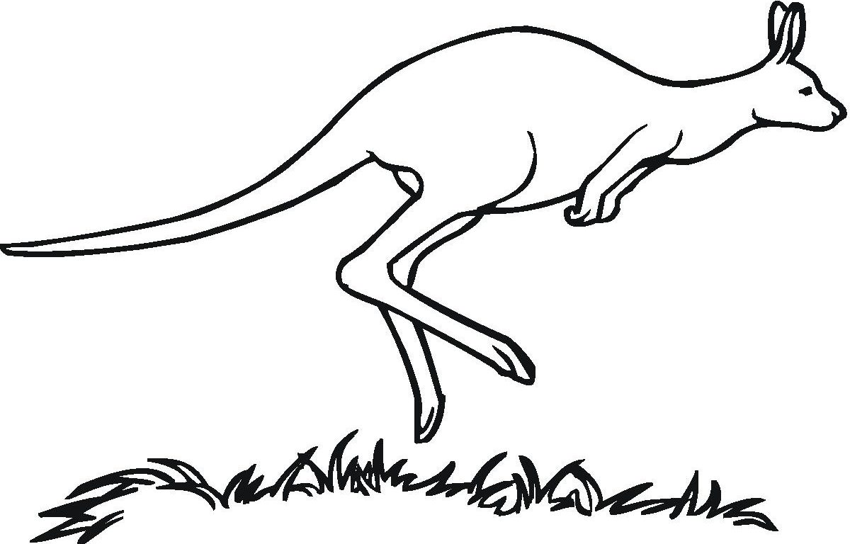 1200x768 Printable Kangaroo Coloring Pages With Letter K Animals Free Book