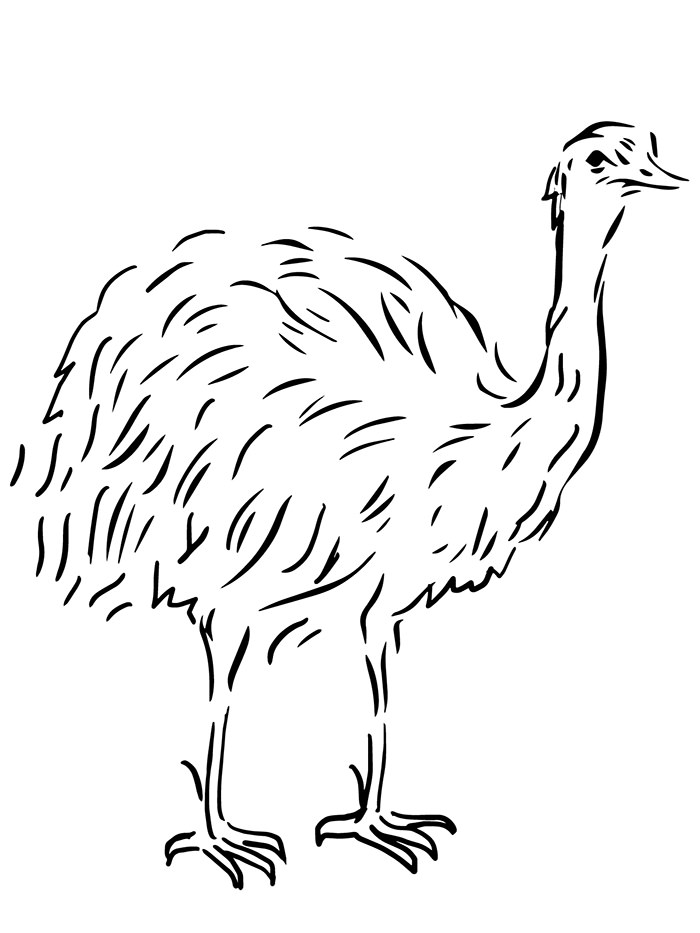 700x933 Australian Animal Template