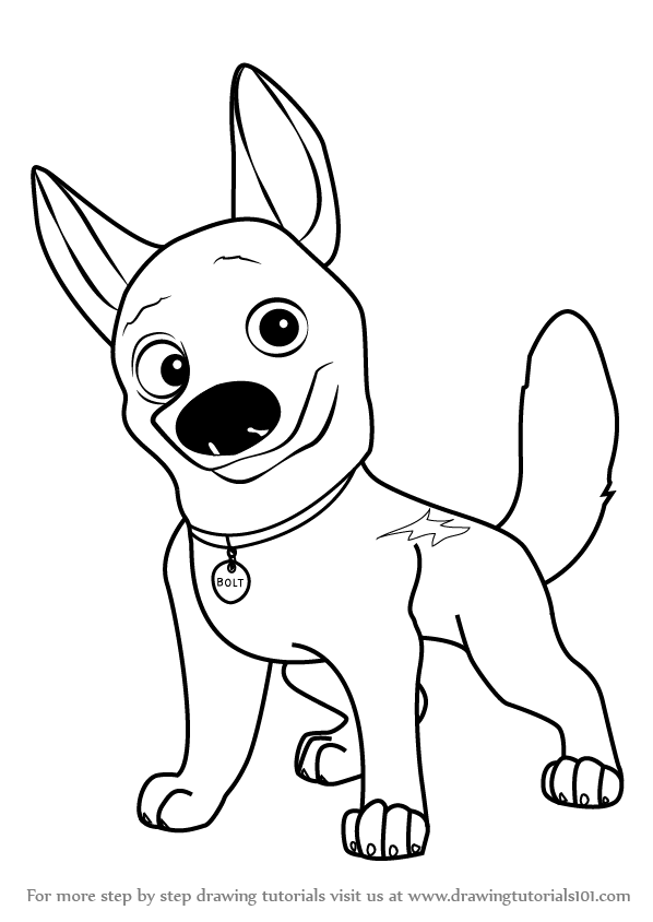 598x844 Learn How To Draw Bolt The Dog (Bolt) Step By Step Drawing Tutorials