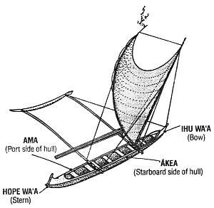 300x292 Drawn Oat Canoe
