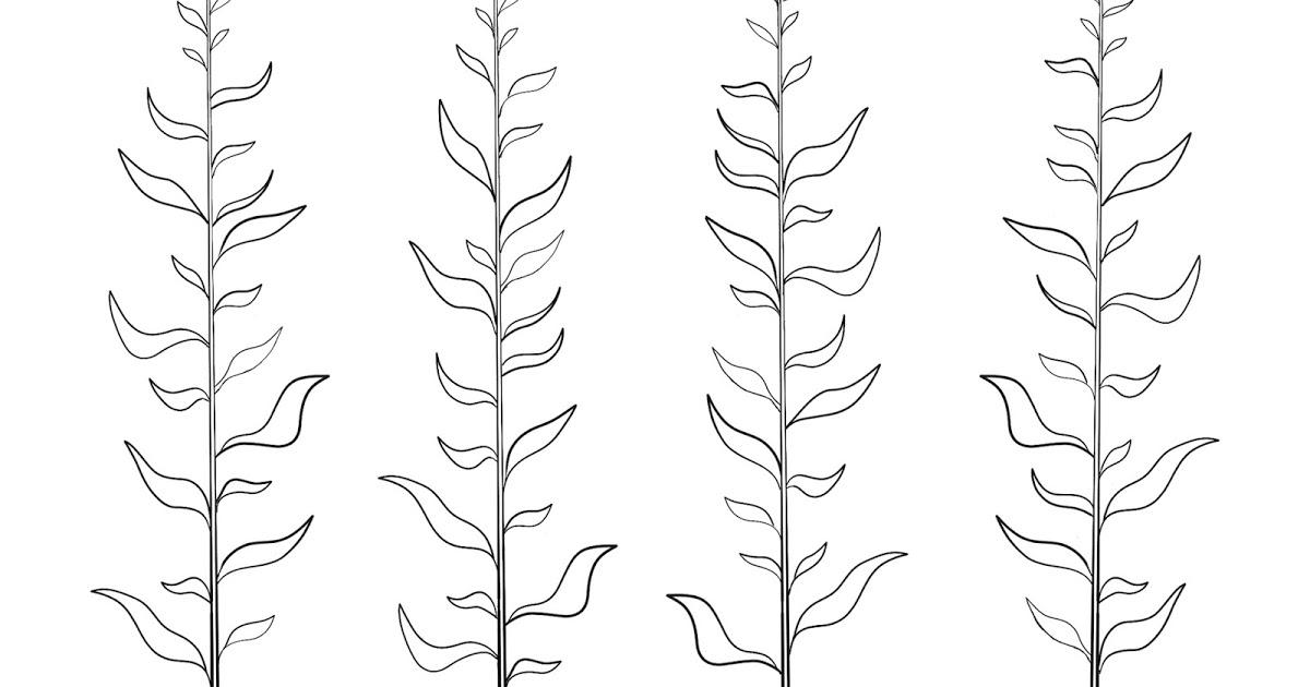1200x630 Deanna Crisbacher Fantastic Voyage Reworking The Kelp