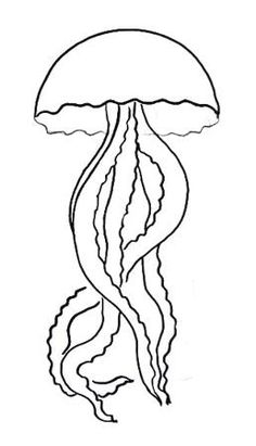 236x411 Image Result For Kelp Drawing 269 Stained Glass