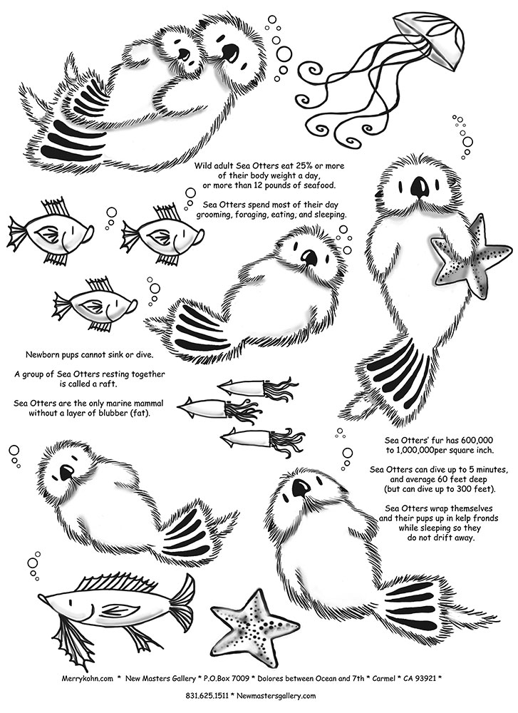 727x1000 Otter Fun Facts Coloring For Kids Otters, Animal