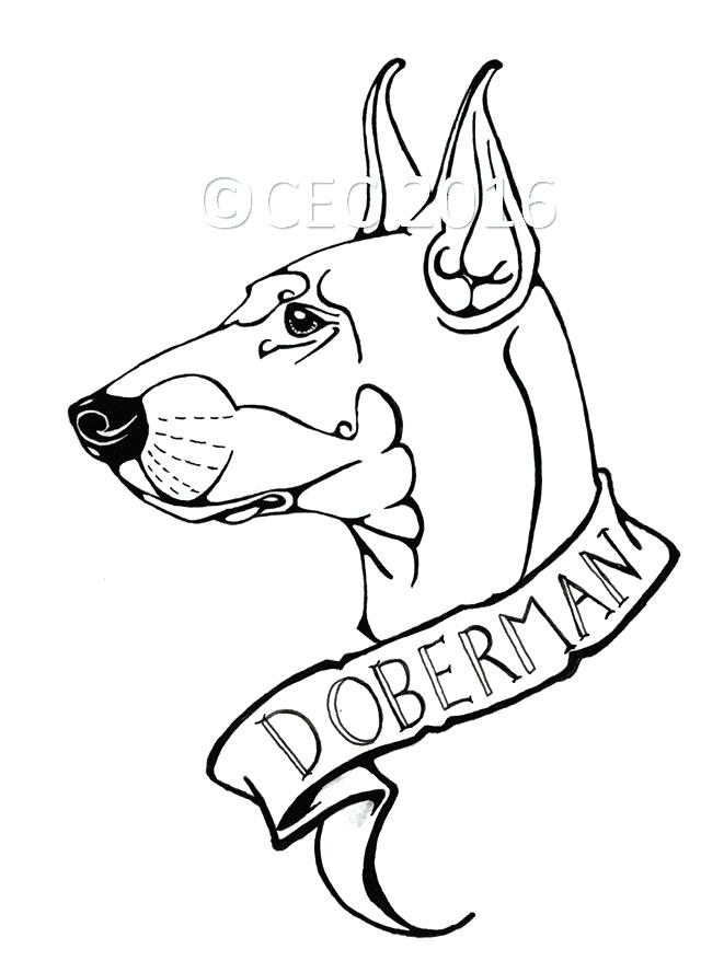 640x878 Inspirational Doberman Coloring Pages Free Download Dog Breed