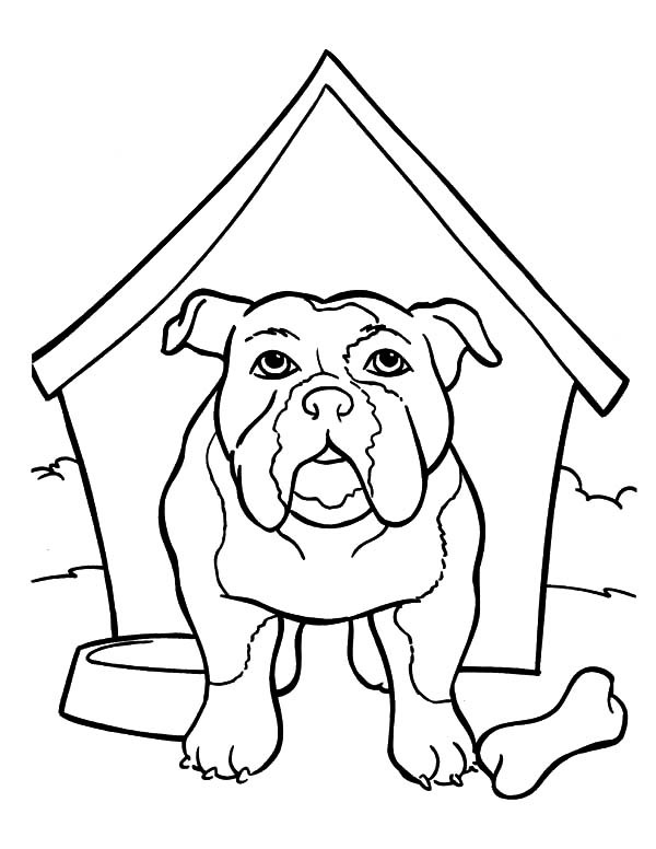 600x776 Bulldog Is In The Kennel Coloring Pages Best Place To Color