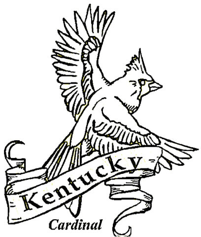 408x480 Kentucky Coloring Page Free Printable Pages