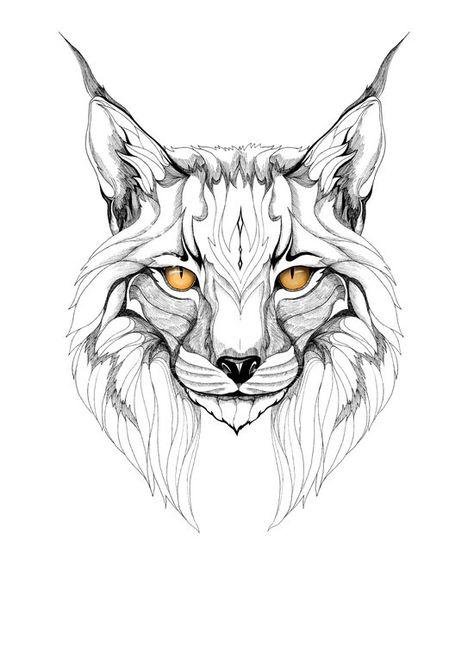 474x670 Wildcat Drawing Wildcat Pride Kentucky