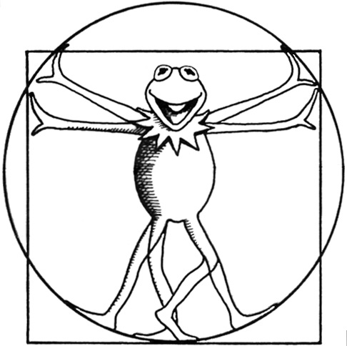 486x484 Kermit As Leonardo Da Vinci's Vitruvian Man Drawing Taken