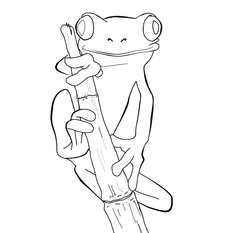 736x753 Frogs Coloring Pages Frog Coloring Page Kermit Frog Coloring Pages