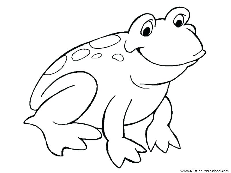 800x600 Kermit The Frog Coloring Pages Frog Coloring Pages To Print Frog