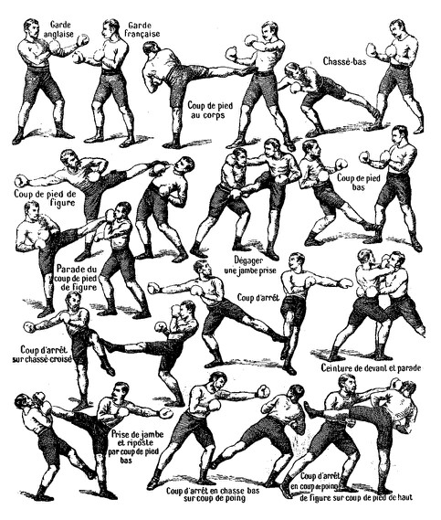 483x569 Savate Martial Art Drawings And Diagrams Martial