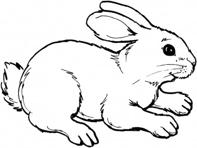 400x301 Cute Animal Rabbit Coloring Books Sheet For Kids Drawing