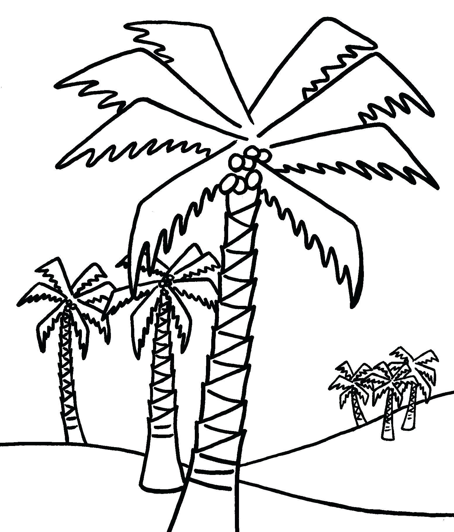 1552x1818 Printable Printable Tree Drawings