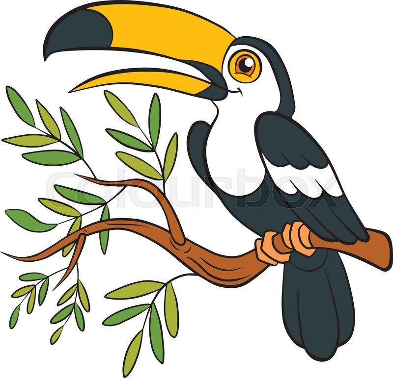 800x771 Cartoon Birds For Kids. Little Cute Toucan Sits On The Tree Branch