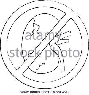 300x320 no human kidney disease medical diagram forbidden sign stock