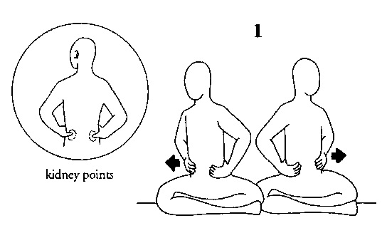537x327 Kundalini Yoga For Toning The Kidneys