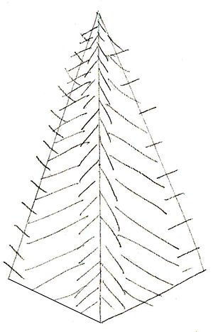 300x468 How To Draw A Christmas Tree