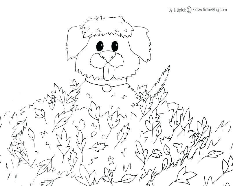805x644 Crayon Color Page