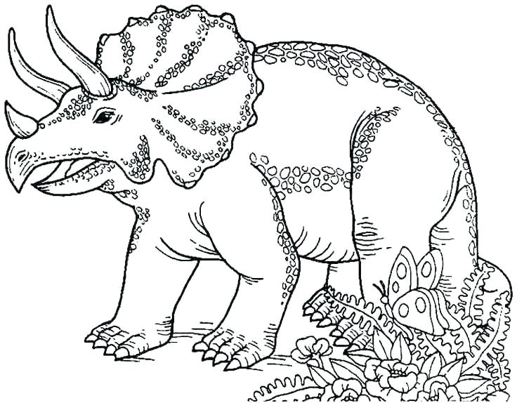 736x574 Dinosaur Drawings For Coloring Kids Dinosaur Coloring Pages