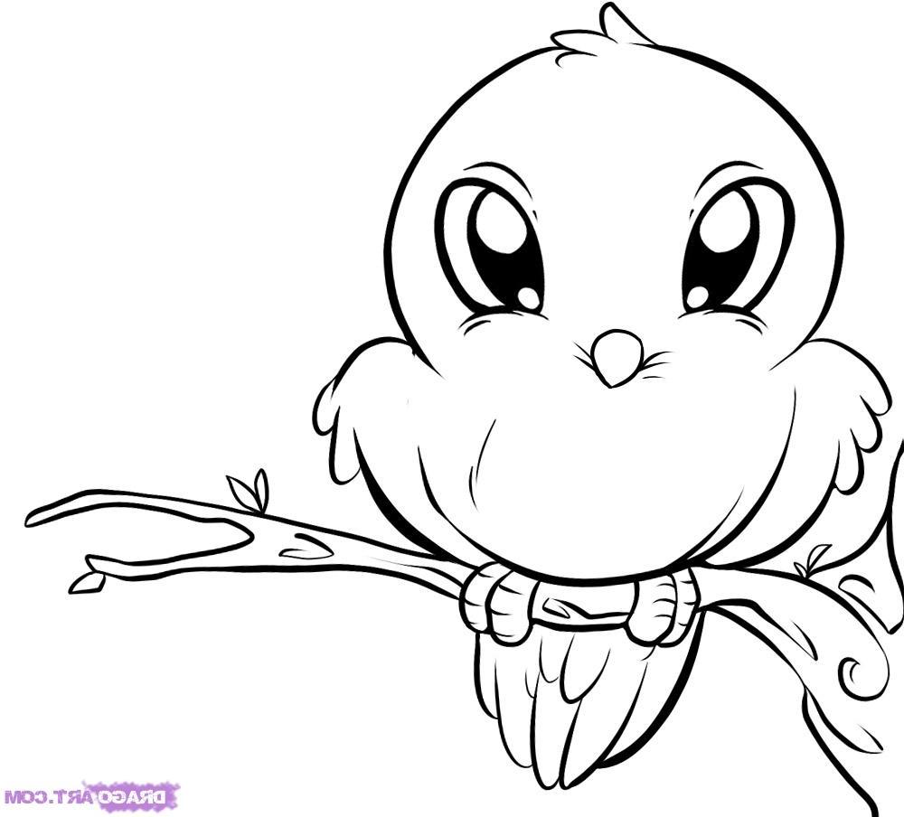 1000x904 Cute Animal Drawing Birds