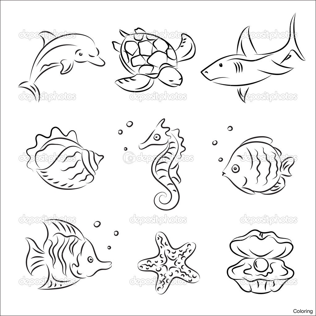 1024x1024 Easy To Draw Aquatic Animals Sea Drawing Animal Drawings Clipart